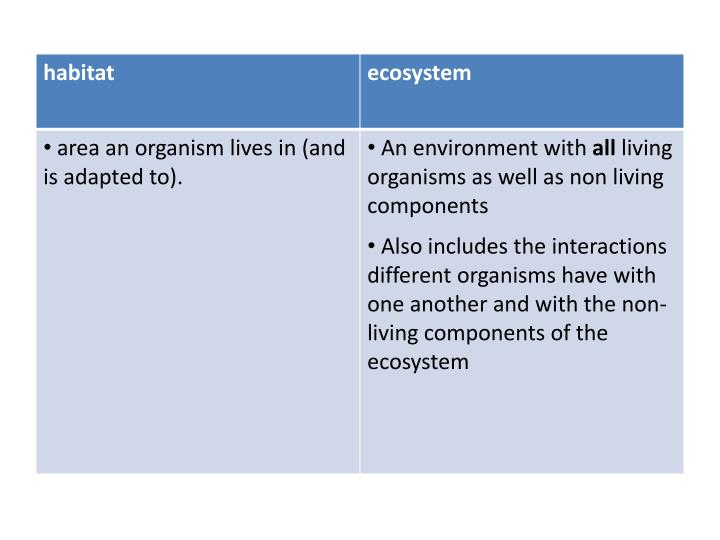 Ecosystem ecological n iche
