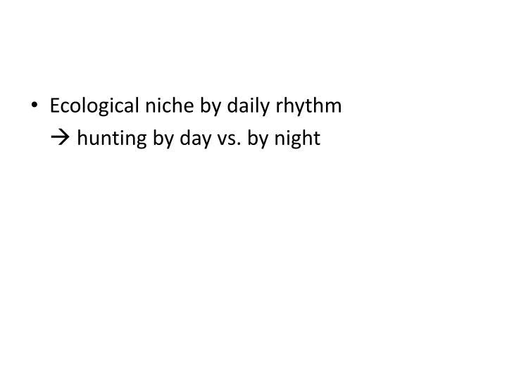 Ecological niche by daily rhythm