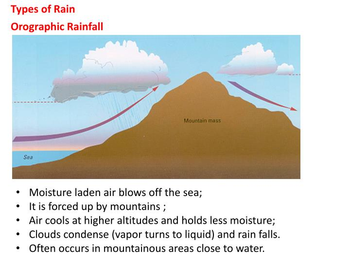 Types of Rain
