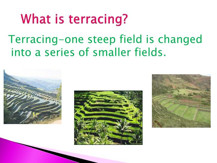 What is terracing?