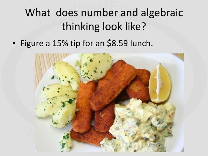 What  does number and algebraic thinking look like?