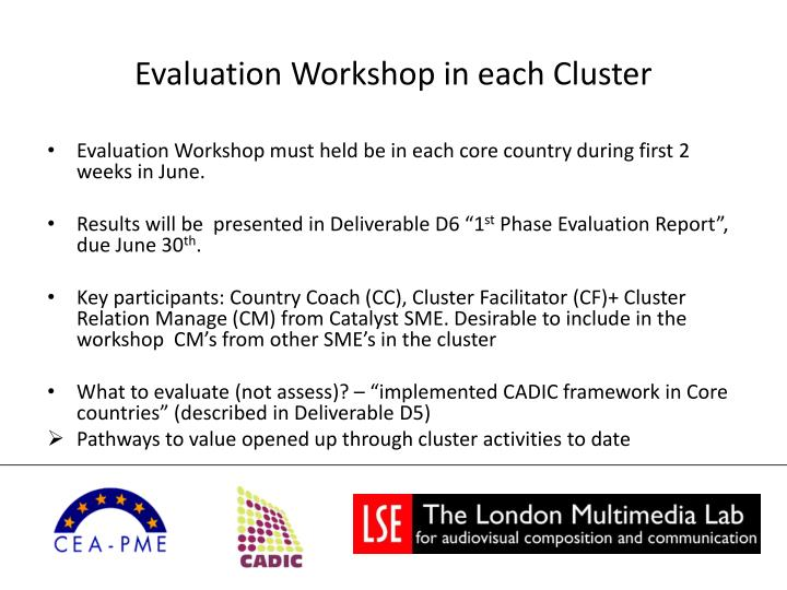 Evaluation workshop in each cluster