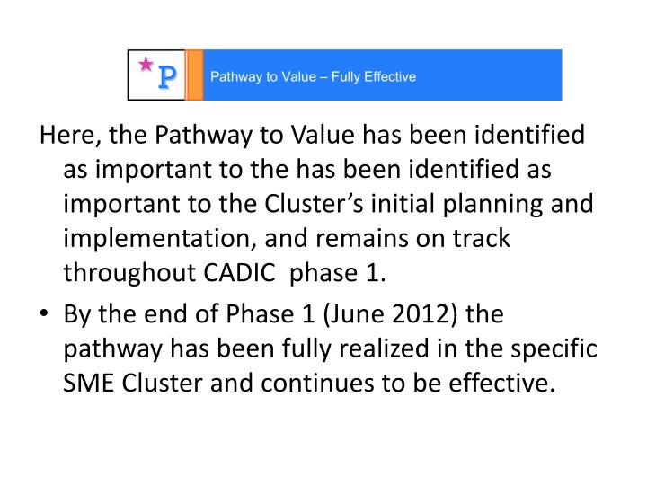 Here, the Pathway to Value has been identified as important to the has been identified as important to the Cluster's initial planning and implementation, and remains on track throughout CADIC  phase 1.