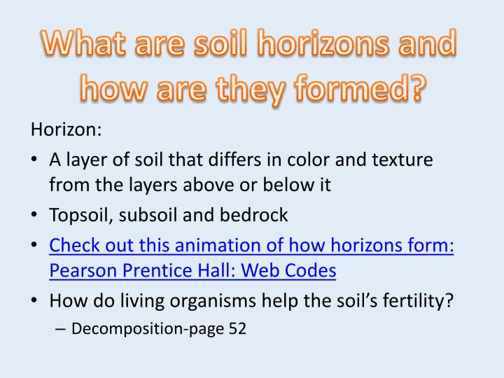 What are soil horizons and