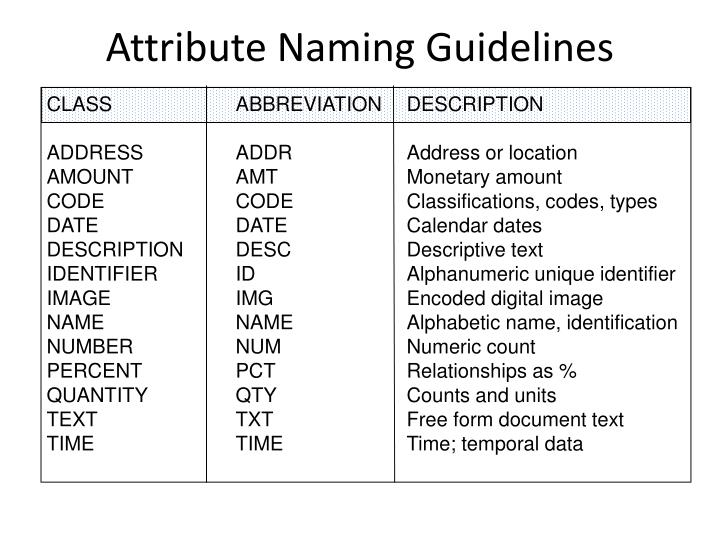 Attribute Naming Guidelines