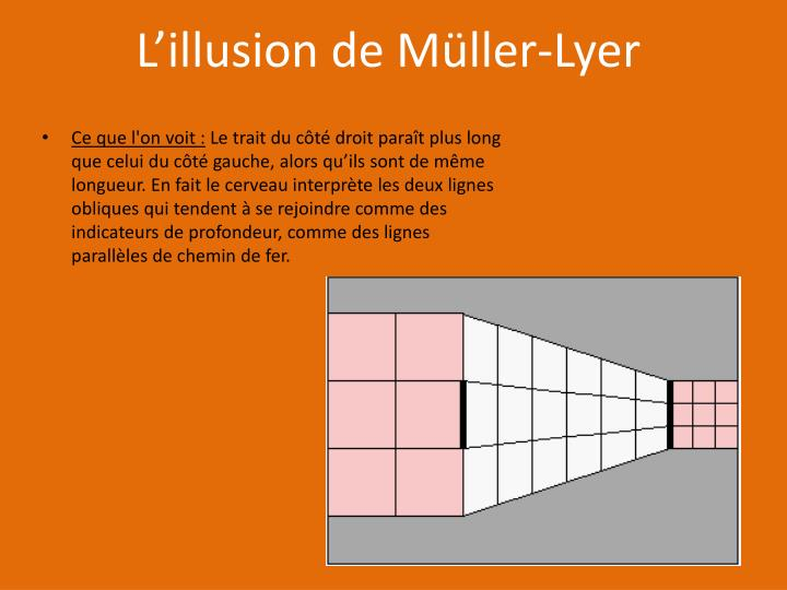 L'illusion de