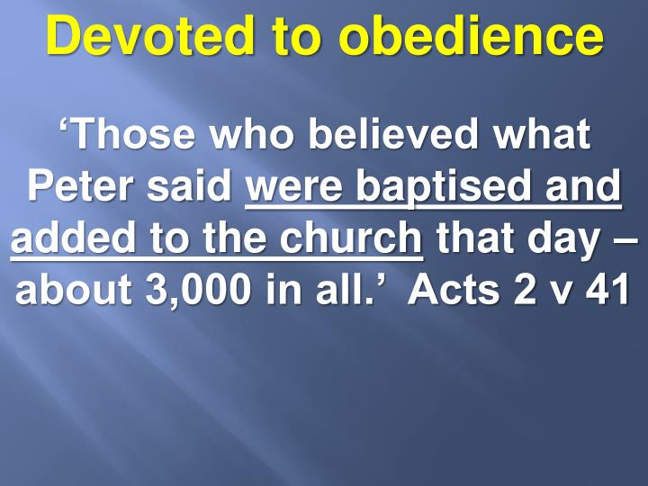 Devoted to obedience