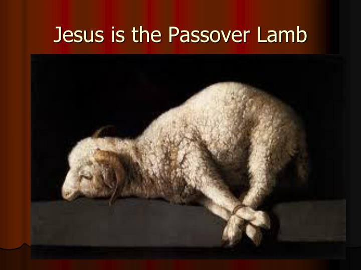 Jesus is the Passover Lamb