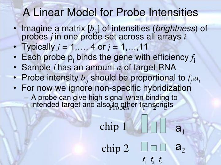 A Linear Model for Probe Intensities