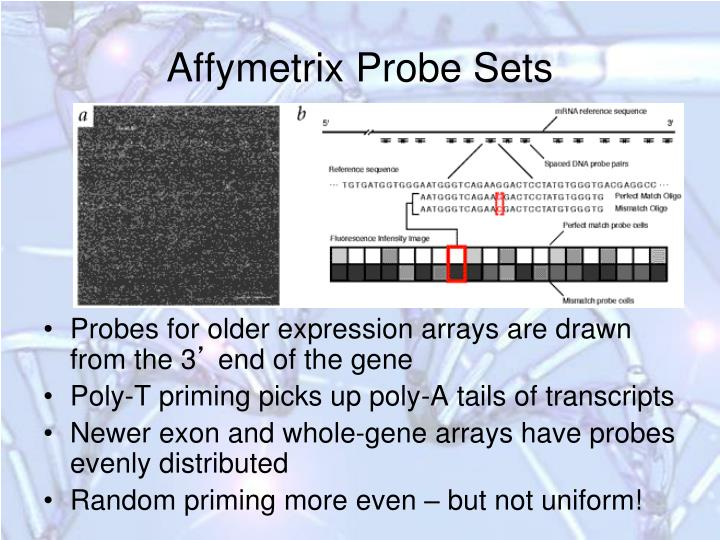 Affymetrix Probe Sets