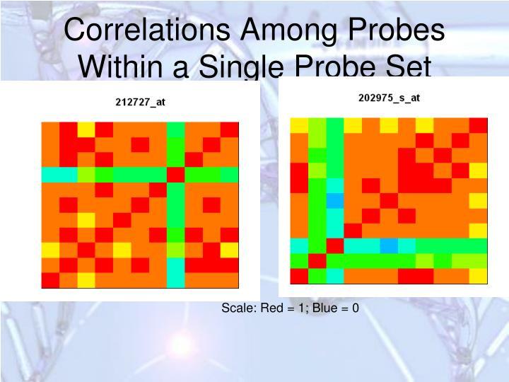 Correlations Among