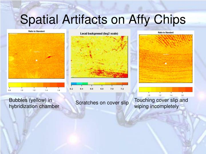 Spatial Artifacts on Affy Chips