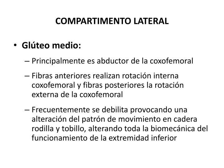 COMPARTIMENTO LATERAL