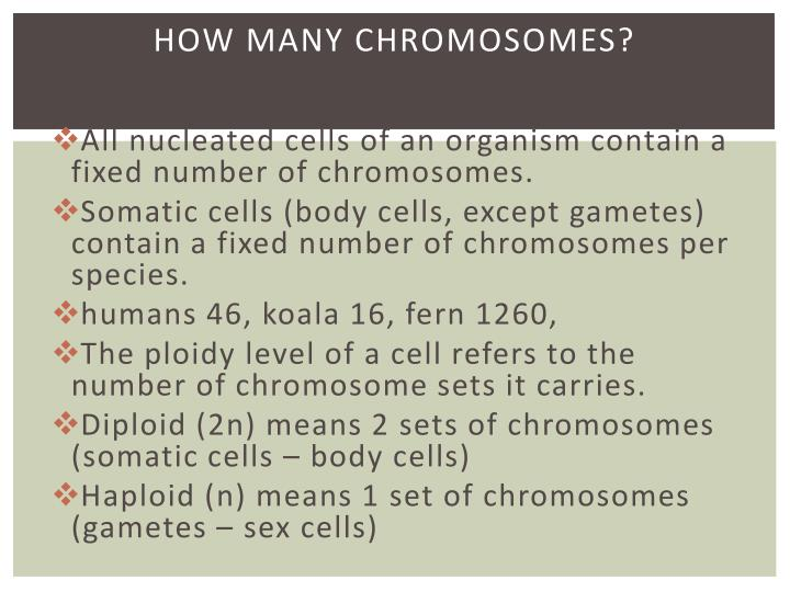 How many chromosomes?
