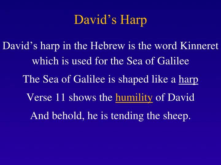 David's Harp