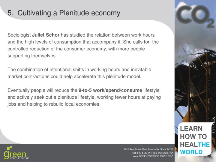 5.  Cultivating a Plenitude economy