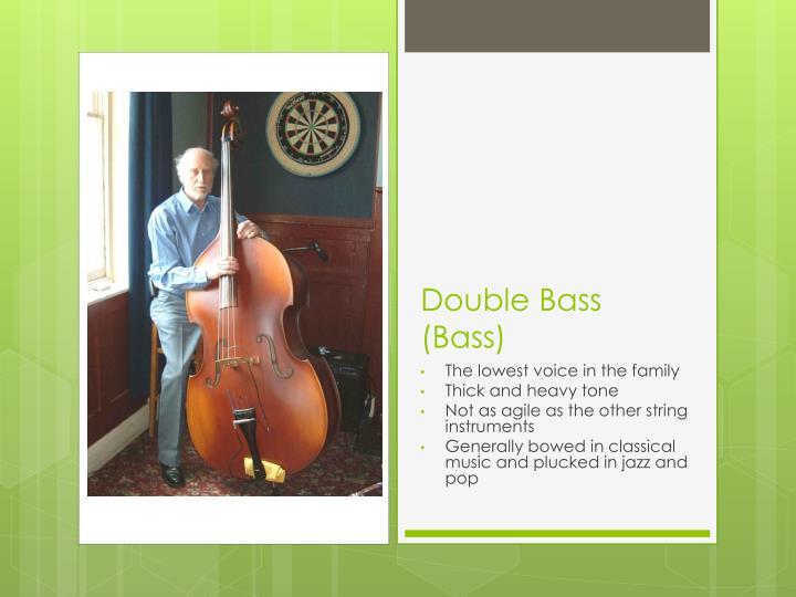 Double Bass (Bass)