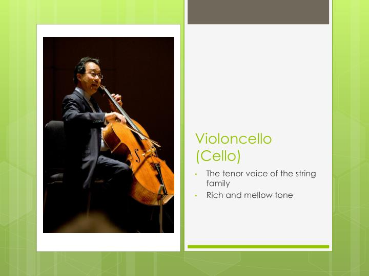 Violoncello (Cello)