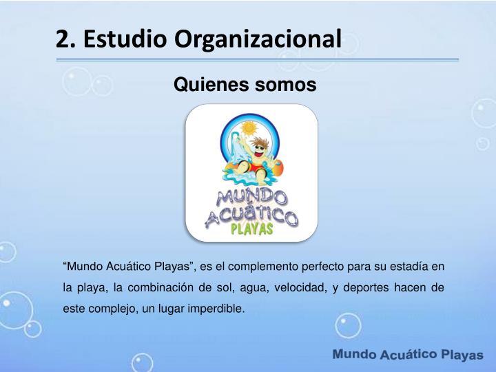 2. Estudio Organizacional