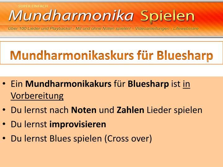 Mundharmonikaskurs