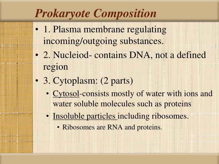 Prokaryote Composition