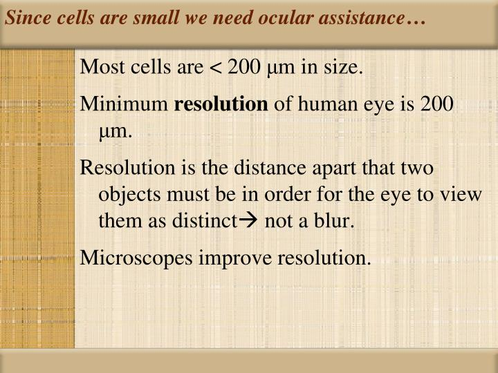 Since cells are small we need ocular assistance…