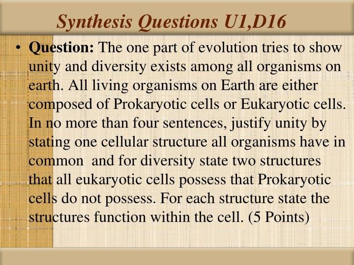 Synthesis Questions U1,D16