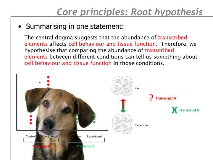 Core principles: