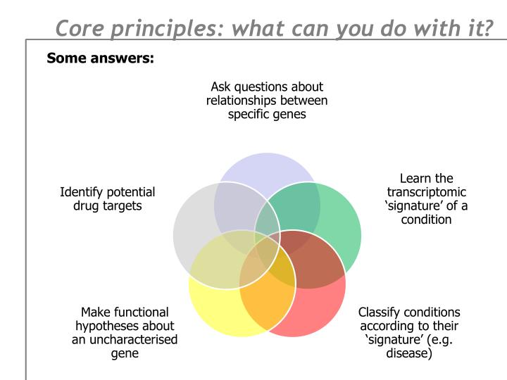 Core principles: what