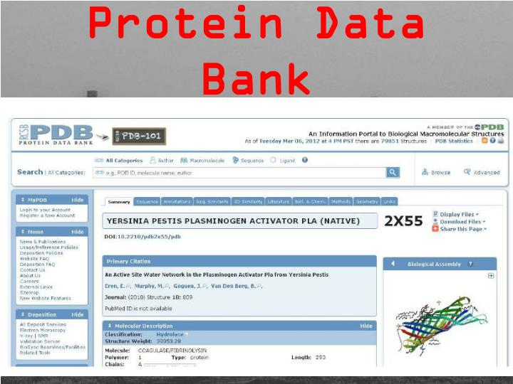 protein data bank Goodsell, d s (2010) the protein data bank: exploring biomolecular structure nature j d, woo, j, young, j, zardecki, c, berman, h m, bourne, p e & burley, s k (2015) the rcsb protein data bank: views of structural biology for basic and applied research and education nucleic.