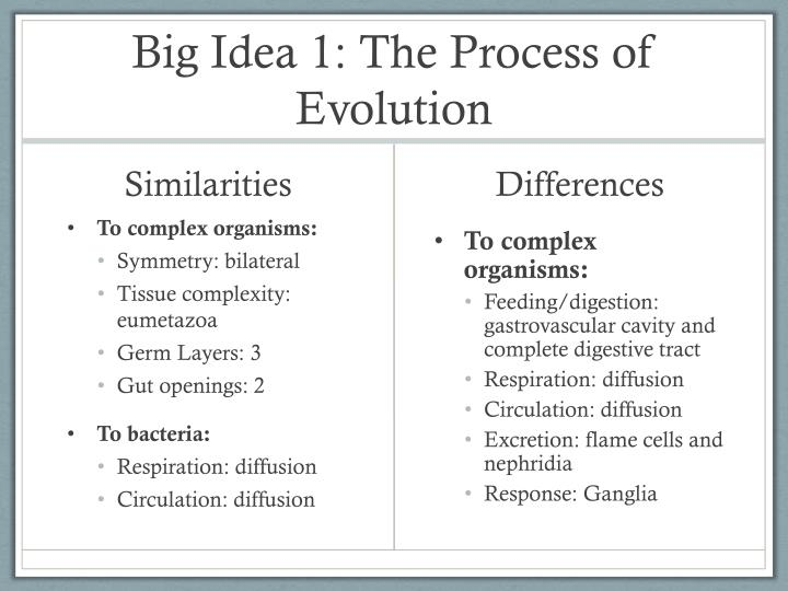 Big Idea 1: The Process of Evolution