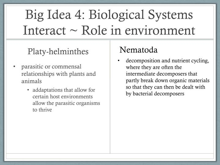 Big Idea 4: Biological Systems Interact ~ Role in environment