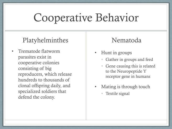 Cooperative Behavior