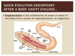 quick evolution checkpoint after a body cavity evolved