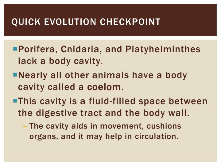 Quick evolution checkpoint