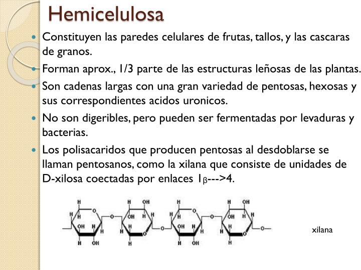 Hemicelulosa