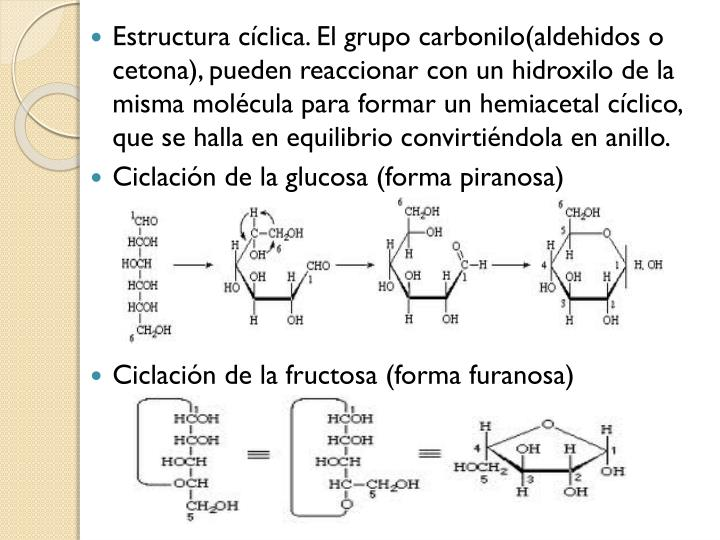 Estructura cíclica. El grupo carbonilo(