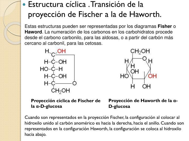 Estas estructuras pueden ser representadas por los diagramas