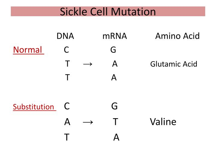 Sickle Cell Mutation