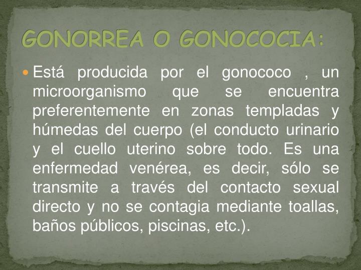 GONORREA O GONOCOCIA: