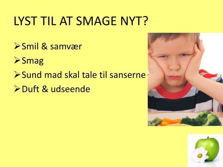 LYST TIL AT SMAGE NYT?