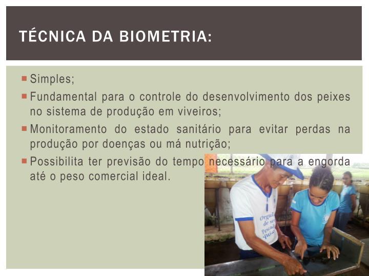 Técnica da Biometria: