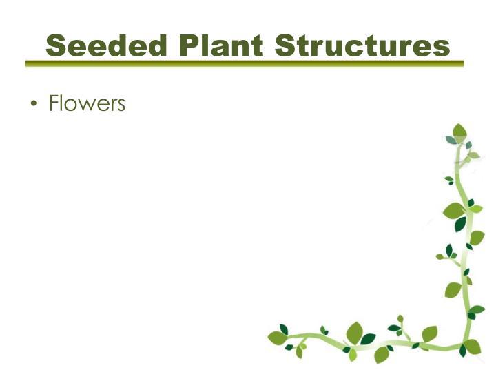 Tougher plants beating stress essay
