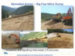 remedial action big five mine dump