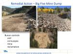 remedial action big five mine dump3