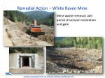 remedial action white raven mine