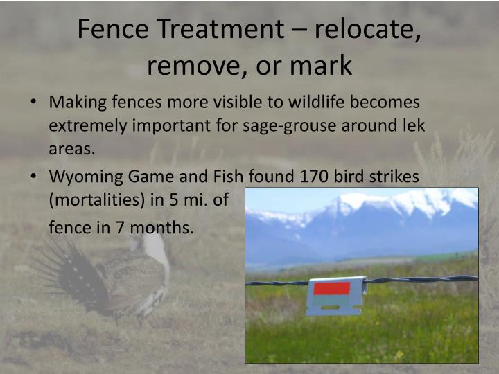 Fence Treatment – relocate, remove, or mark