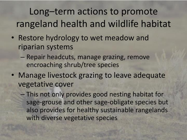 Long–term actions to promote rangeland health and wildlife habitat