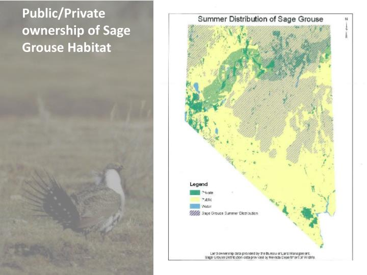 Public private ownership of sage grouse habitat