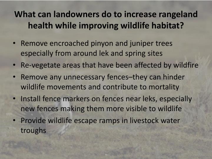 What can landowners do to increase rangeland health while improving wildlife habitat?